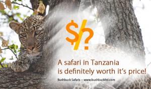Tanzania Safari Blog