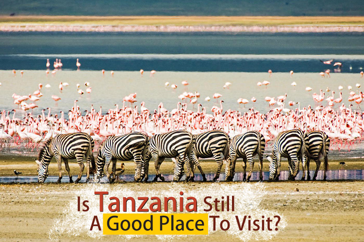 Is Tanzania Still A Good Place To Visit?