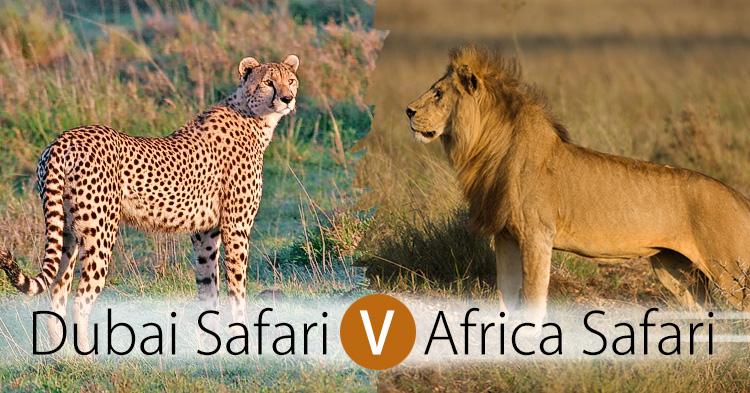 Dubai safari versus African Safari