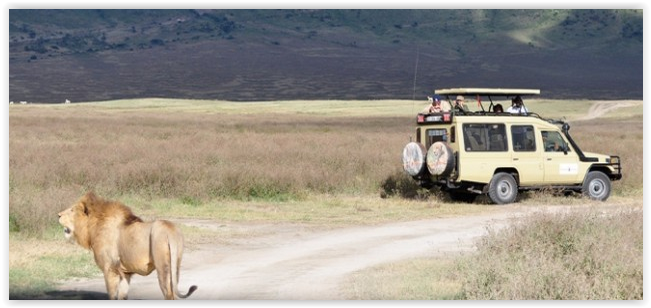 Travel around every part of Tanzania to see the natural sights