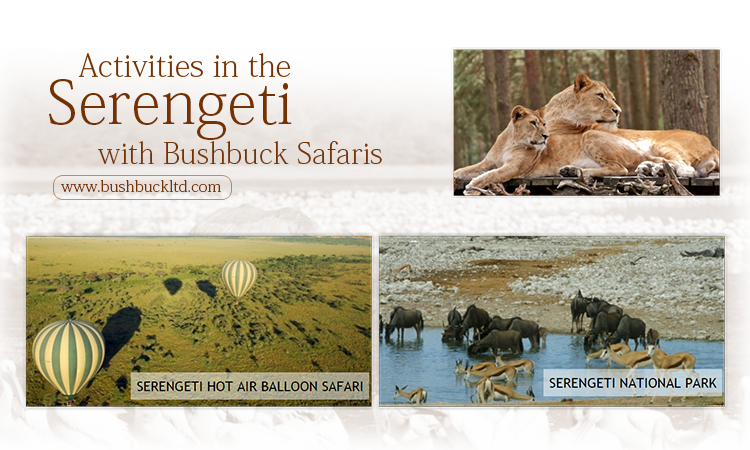 Activities in the Serengeti