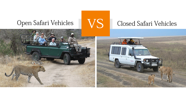 Open Safari Vehicles vs. Closed Safari Vehicles