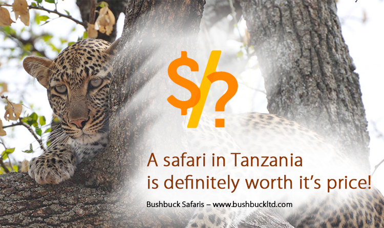 Why is safari expensive In Tanzania and is it worth it?