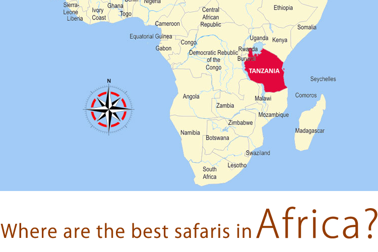 Where are the best safaris in Africa?