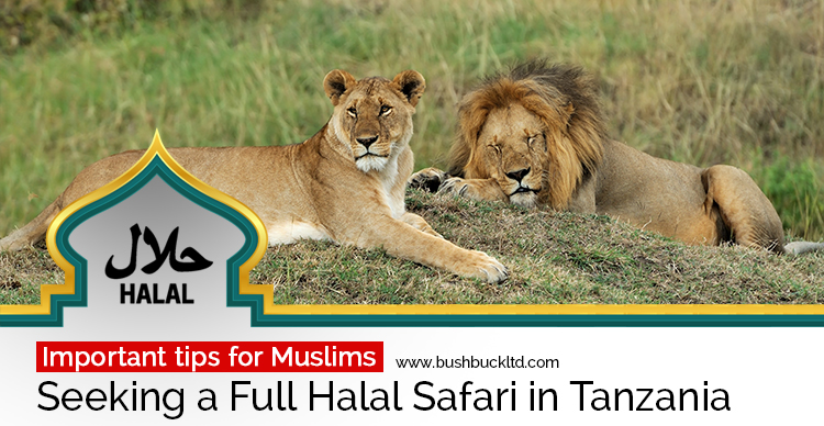 Halal-Friendly Safaris in Tanzania – Important Tips