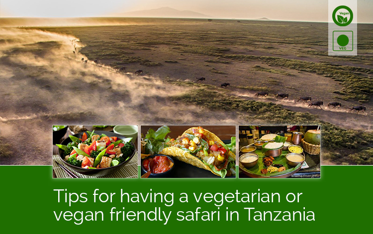 The ultimate guide to having a vegetarian or vegan-friendly safari in Tanzania