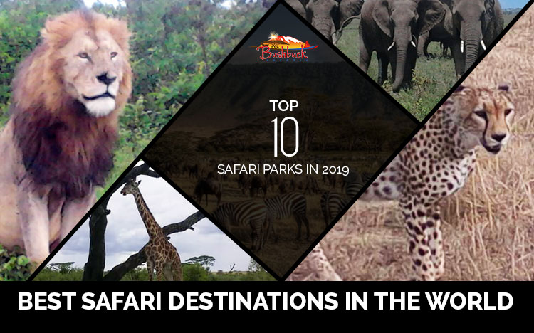 Best Safari Destinations in the world – Top 10 Safari Parks in 2019