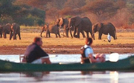 Canoeing Lake Manyara