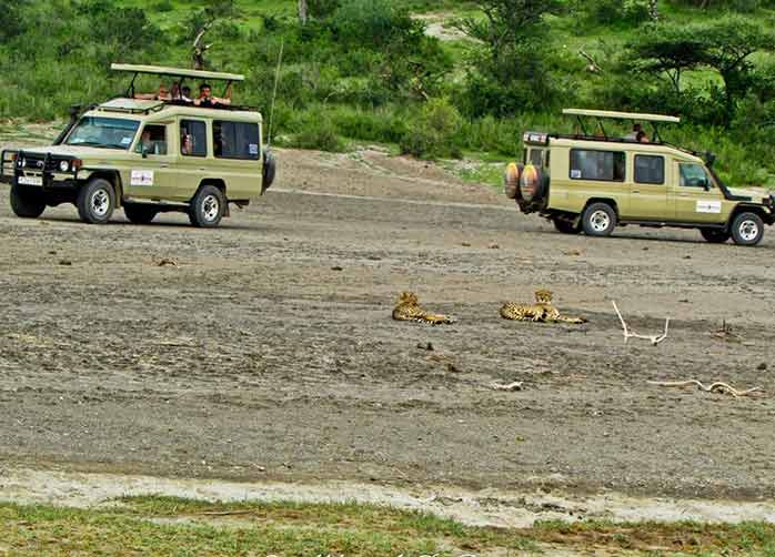 Crater Safari Excursion for schools and colleges