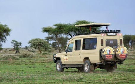 Tanzania Daily Departures